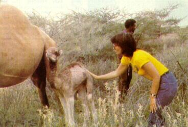 Ronstadt on safari in Kenya
